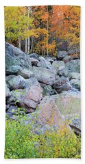 Beach Towel featuring the photograph Painted Rocks by David Chandler