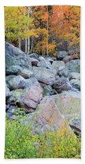 Painted Rocks Beach Towel by David Chandler