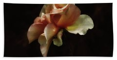 Beach Towel featuring the photograph Painted Roses by Elaine Malott