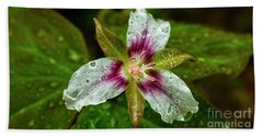 Painted Trillium With Raindrops Beach Towel