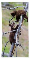 Pair Of Bear Cubs In A Tree Beach Towel