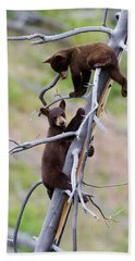 Pair Of Bear Cubs In A Tree Beach Towel