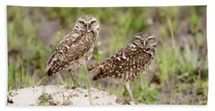 Pair Of Burrowing Owls Beach Towel