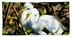 Pair Of Courting Great Egrets Beach Towel