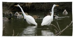Beach Sheet featuring the photograph Pair Of Egrets by George Randy Bass