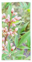 Pale Powder Pink Plant Beach Sheet