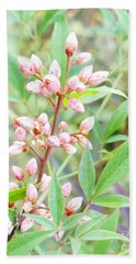 Beach Towel featuring the photograph Pale Powder Pink Plant by Ivana Westin