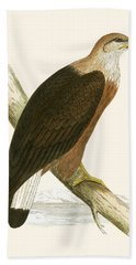 Pallas's Sea Eagle Beach Towel by English School