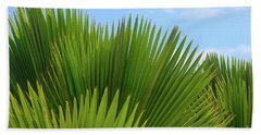 Palm Fans Beach Towel