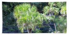 Palm Tree Blue Pond Beach Towel