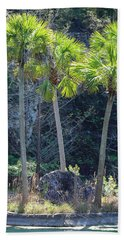Beach Towel featuring the photograph Palm Tree Island by Raphael Lopez