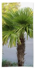 Palm Tree Just There Beach Towel