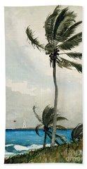 Palm Tree, Nassau, 1898 Beach Towel