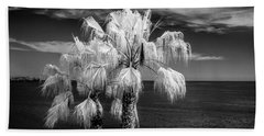 Beach Sheet featuring the photograph Palm Trees At Laguna Beach In Infrared Black And White by Randall Nyhof