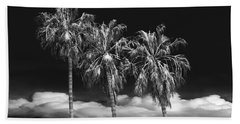 Beach Sheet featuring the photograph Palm Trees In Black And White On Cabrillo Beach by Randall Nyhof
