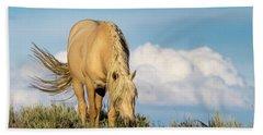 Palomino Wild Stallion In The Evening Light Beach Towel