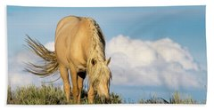 Palomino Wild Stallion In The Evening Light Beach Sheet