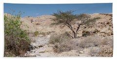 Panorama On Genesis Land 02 Beach Towel