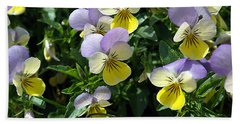 Pansies Beach Sheet
