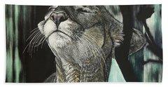 Panther, Cool Beach Sheet