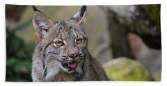 Panting Lynx Beach Towel