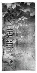 Parallel Botany #0810 Beach Sheet