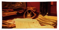 Parcel Cat Beach Sheet
