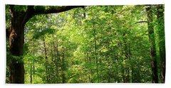 Paris Mountain State Park South Carolina Beach Towel