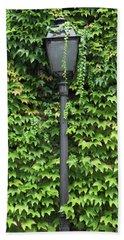 Parisian Lamp And Ivy Beach Sheet