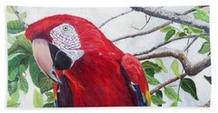 Parrot Portrait Beach Sheet