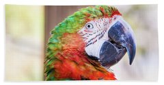 Parrot Beach Towel by Stephanie Hayes