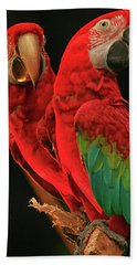 Beach Towel featuring the photograph Parrots by Jacqui Boonstra