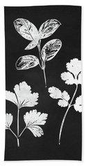 Parsley Cilantro Basil Leaves- Art By Linda Woods Beach Towel