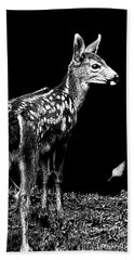 Beach Towel featuring the photograph Passing Fawn by Adria Trail