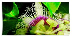 Passion Flower 2 Reflecting Beach Towel