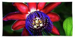 Beach Towel featuring the photograph Passion Flower by Anthony Jones