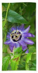 Passion Flower Betty Myles Young Beach Towel