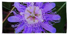 Passion Flower Bloom Beach Towel by Shirley Moravec