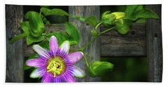 Passion Flower On The Fence Beach Towel