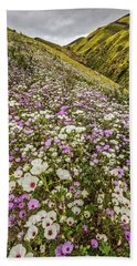 Beach Sheet featuring the photograph Pastel Super Bloom by Peter Tellone