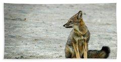 Patagonia Fox - Argentina Beach Towel