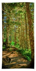 Path In The Trees Beach Towel
