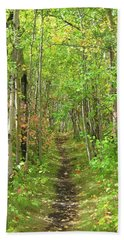 Path In The Woods Beach Sheet