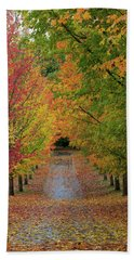 Path Lined With Maple Trees In Fall Season Beach Towel