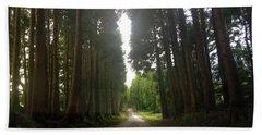 Path Through The Woods Beach Sheet
