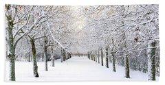 Pathway In Snow Beach Sheet