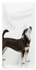 Paula Marshburn  04 Beach Towel
