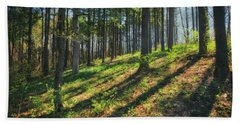 Peaceful Forest 4 - Spring At Retzer Nature Center Beach Sheet by Jennifer Rondinelli Reilly - Fine Art Photography
