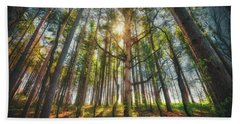 Peaceful Forest 5 - Spring At Retzer Nature Center Beach Towel by Jennifer Rondinelli Reilly - Fine Art Photography
