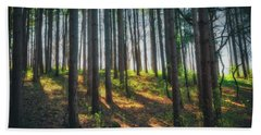 Peaceful Forest - Spring At Retzer Nature Center Beach Sheet by Jennifer Rondinelli Reilly - Fine Art Photography